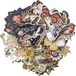 "Bild von Idea-Ology Layers Die-Cuts 83/Pkg-Botanical .75""X1"" To 6.5""X2"""