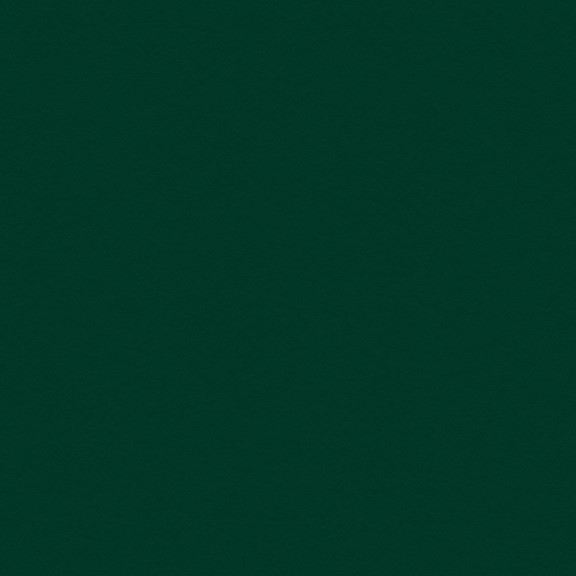 "Bild von My Colors Classic 80lb Cover Weight Cardstock 12""X12""-Forest Green"